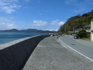 通漁港 奥の道路沿い