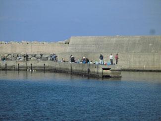 漁港 港内の波止