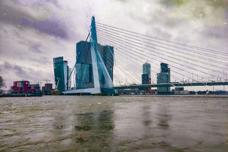 Markthalle, Rotterdam, Niederlande, Die Traumreiser