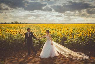 strahlende Braut mit Schleier