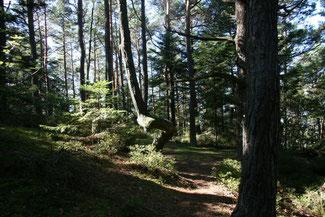 Mont Sainte Odile