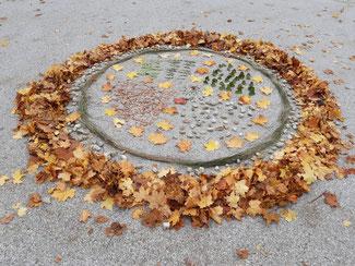 Frühling - Sommer - Herbst - Winter