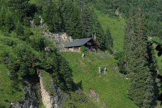 Einzigartig gelegene Stelihütte oberhalb Hofstetten