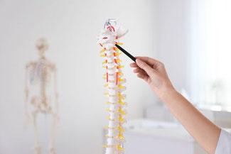 Osteopathie und Chiropraktik in Naturheilpraxis für Osteopathie in Starnberg