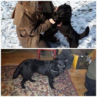 Adoptiert 2016