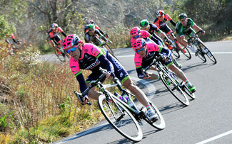 Trofeo Laigueglia © Bettiniphoto