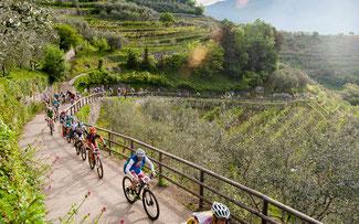 Bikefestival am Gardasee © Bosch eBike Systems