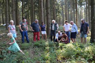 Forstamtsleiter Winand Schmitz erläutert den Vertretern der FDP die schwierige Situation, in der sich der Wald zurzeit befindet.