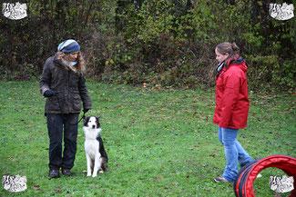 ec chiens cours education canine avec un maître qui veut eduquer son chien en utilisant la methode du leadership training avec l'aide d'un educateur canin professionnel