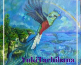 立花雪 YukiTachibana  ケツァール鳥 炎と楽園のアート