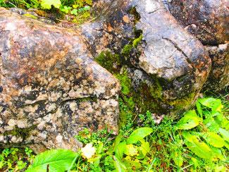 'Steine und Blätter teilen sich hier die Wirkung