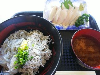田子の浦漁協食堂のしらす丼