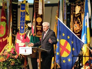 Der bayerische Ministerpräsident Horst Seehofer auf dem 66. Sudetendeutschen Tag in Augsburg. Foto: Karl-Josef Hildenbrand