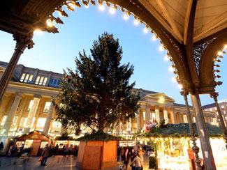 Der Weihnachtsbaum wird mit Ökostrom versorgt. Foto: Bernd Weißbrod/Archiv