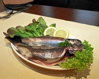 Frisch gefangener Fisch aus der Region