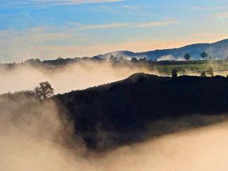 dampfender Nebel auch in der Ebene