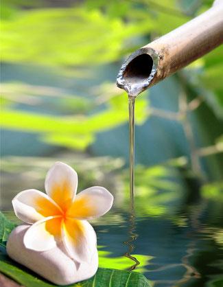 Energetikerin Bild mit Wasser und Blumd