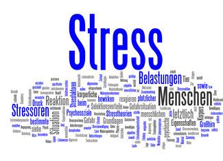 Erleben Sie eine Psychoharmonisierungen bei der Energetikerin aus Niederösterreich