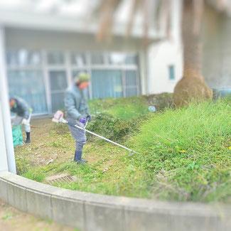 刈払機 草刈り 除草