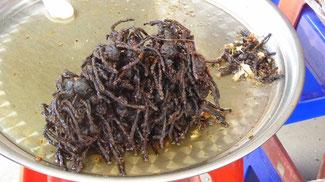 Bild: Frittierte Vogelspinnen eine Delikatesse