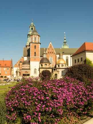 Bild: Der Wawel in Krakau