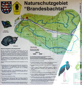 Bild: Tafel: Naturschutzgebiet Brandesbachtal im Südharz