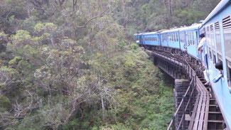 Bild: Mit dem Zug durch Sri Lanka