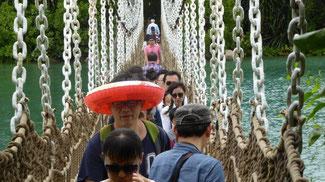Bild: Hängebrücke auf der Sentosa Insel