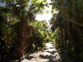 Bild: Der Sayler Nature Trail