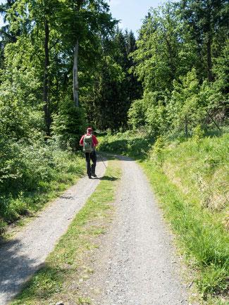 Bild: Kaiserweg im Südharz