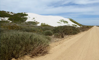 Bild: Sanddünen auf dem Weg zur Tsaarsbank