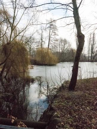 Bild: Lindengarten in Wismar an der Ostsee