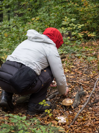 Bild: Judith beim Pilzsammeln