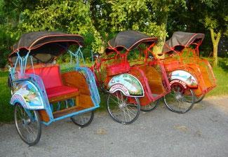 Riksja fietstaxi de vervoering huren Woerden promotie reclame bruiloft trouwreportage becak pendeldienst taxi
