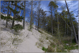 Nationalpark Slowinski Leba Wanderünen