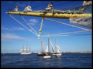 Klipper Pegasus Hanse Sail Rostock