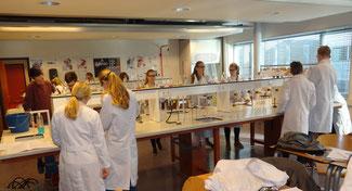 Selbstständiges Arbeiten - hier im Chemieunterricht - spielt für die Oberstufenschüler eine große Rolle. Foto: Ulrichs