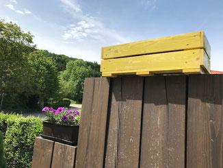 Holzöl und Naturfarben in unserem Baustoffhandel. Blumenkasten in Holzlasur farblos gemischt mit Farbpigmenten in gelb.