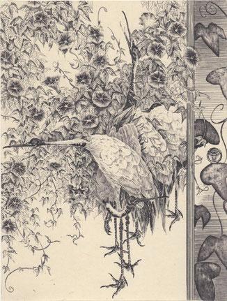 朝顔に鶴/銅版/雁皮刷り 20×15.5cm