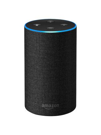 Amazon Alexa ist ein weitverbreiter Sprachassistent, mit dem man Anfragen an ein Computerprogramm in Form von natürlicher Sprache absenden kann. Alexa reagiert nun auf Fragen zum Leben von Kaiser Friedrich, dem Dritten.