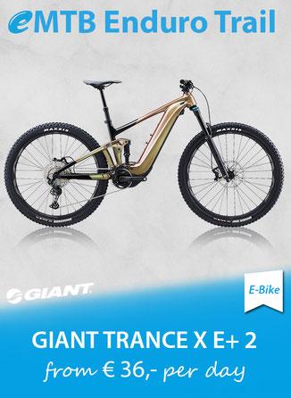 eMTB Enduro Trail GIANT Trance E+ 2 Pro