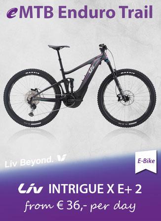E-Bike Trail   GIANT eMTB Trance E+ Pro