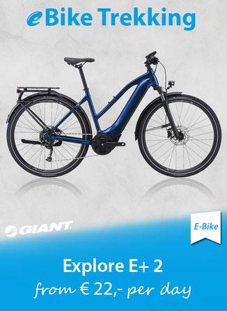 Bike Trailer tout terrain Singletrailer