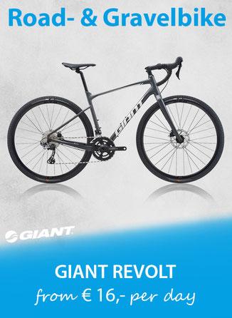 X-Road Gravelbike GIANT Toughroad 2019 Leihbike