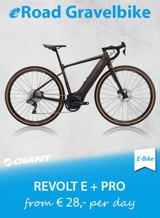LIV Hail 2019 MTB Enduro Mietbike