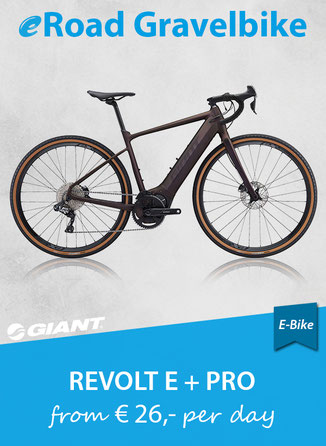 E-Bike Enduro Trail LIV Intrique E+ PRO 2019