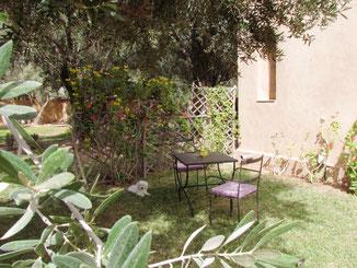 le jardin privé de la chambre d'hotes Coriandre, riad maison d'hotes hôtel le jardin des épices à Taroudant, maroc