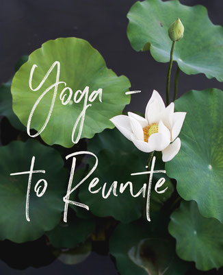 Yoga means 'to reunite'