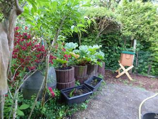 Ein schöner Platz für die Bienenbox!