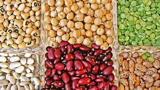 Nachhaltige Hülsenfrüchte